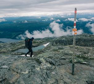 Klättermusen: The Courageous Climbing Mouse